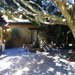 Courtyard, Royal Palms