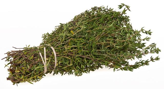 A bundle of fresh thyme sprigs